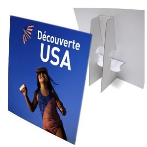 100 présentoir carton format 15x21x3 cm